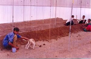 Planting prep40001