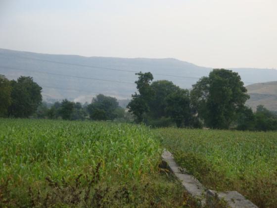 Sayadhri Hills